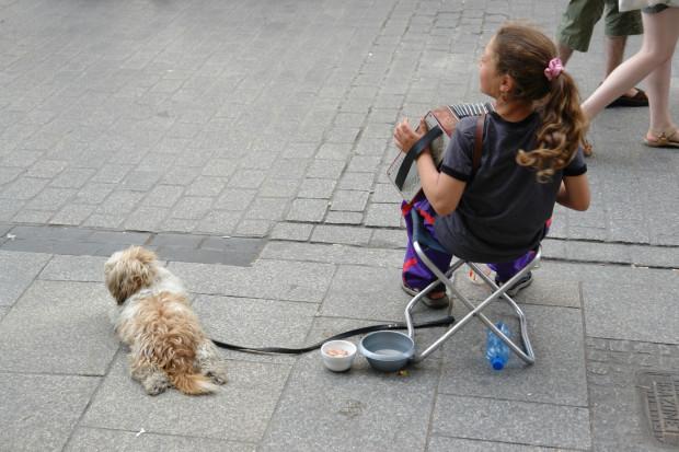Żebrzące dzieci to częsty widok nie tylko na gdańskich ulicach. Służby miejskie apelują, aby każdy taki przypadek zgłaszać policji bądź straży miejskiej.
