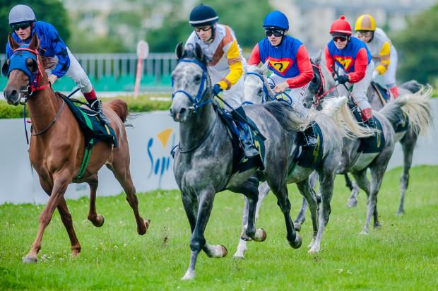 Każdego dnia imprezy na hipodromie odbędzie się siedem wyścigów konnych.