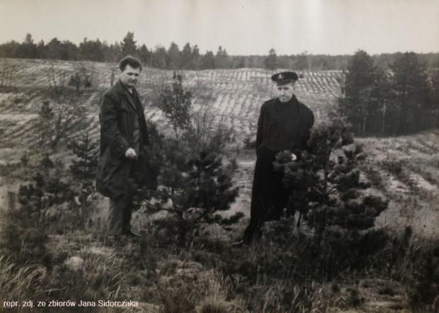 Jan Sidorczak (po lewej) na nowo założonej uprawie leśnej na terenie Wyspy Sobieszewskiej. Po prawej stronie stoi Aleksander Matulewicz, naczelnik Wydziału Ochrony Wybrzeża Urzędu Morskiego.
