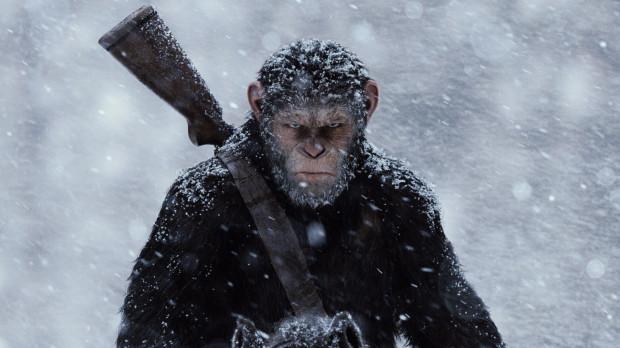 Dowodzący małpami Ceasar pragnie odnaleźć bezpieczne schronienie dla swoich poddanych. Brutalny atak wojsk Pułkownika sprawia jednak, że porzuca pacyfistyczne zamiary i rusza w pościg za ludźmi, chcąc wziąć rewanż za osobiste krzywdy.