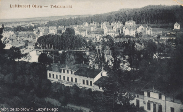 Hotel i restauracja widziane z Pachołka ok. 1905 r.