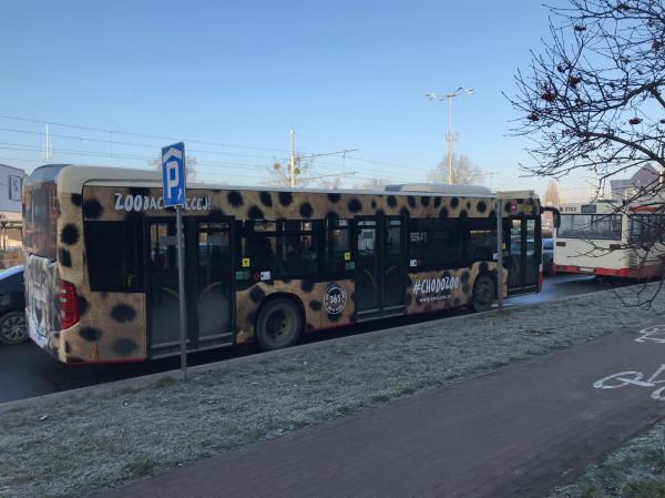 Umowa między zoo a GAiT na oklejenie autobusu, obowiązywać będzie przez trzy lata.