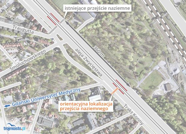 Planowane przejście miałoby powstać na wysokości przystanku tramwajowego.
