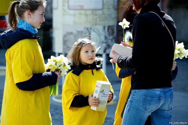 Pola Nadziei to nie tylko okazja ku temu, aby finansowo wesprzeć hospicja. To też możliwość przyjrzenia się, jak wygląda praca wolontariusza i dlaczego warto angażować się w tego rodzaju akcje społeczne.