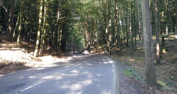 Wycinka drzew ma poprawić bezpieczeństwo na krętej drodze.
