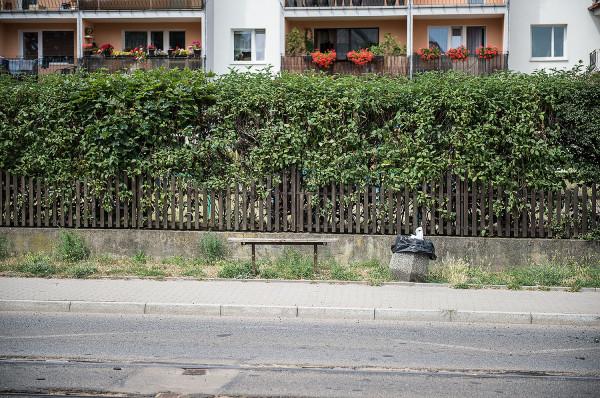 Zmiany na ul. Mickiewicza mają dotyczyć przede wszystkim małej infrastruktury, takiej jak oświetlenie, ławki i kosze na śmieci.