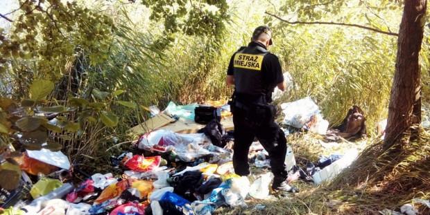 Strażnicy miejscy ustalili właścicieli śmieci na podstawie dokumentów znalezionych wśród odpadków.