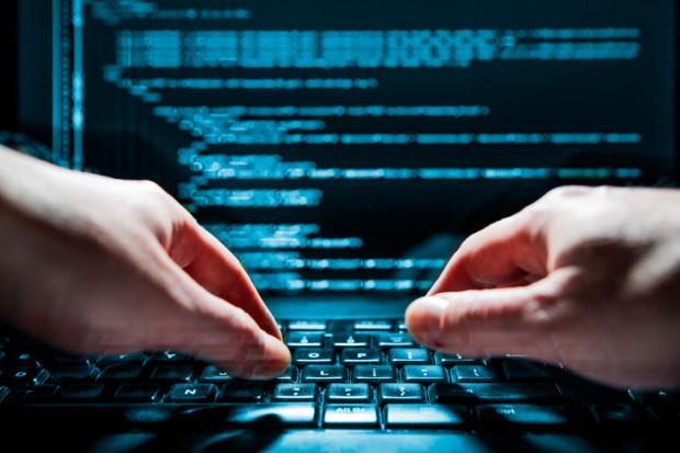 Hestia twierdzi, że w wyniku ataku hakerskiego zabezpieczenia jej infrastruktury nie zostały przełamane, a mechanizmy bezpieczeństwa usunęły z rozesłanych do przypadkowych odbiorców maili złośliwy kod.