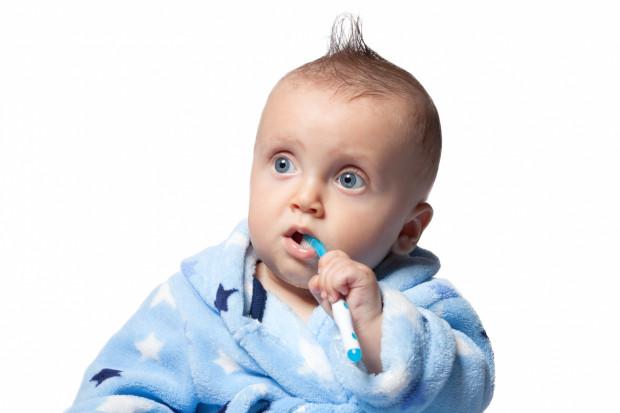 Roczne dziecko może już samo próbować szczotkować swoje pierwsze ząbki - oczywiście pod nadzorem opiekunów oraz z ich pomocą.