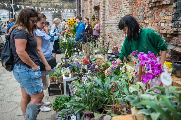 Na Ulicy Elektryków odbędzie się Gdański Targ Roślinny.