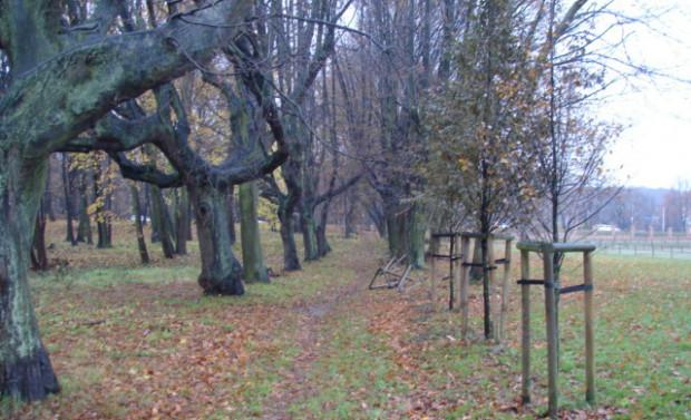 Park w Kolibkach w jesiennym ujęciu