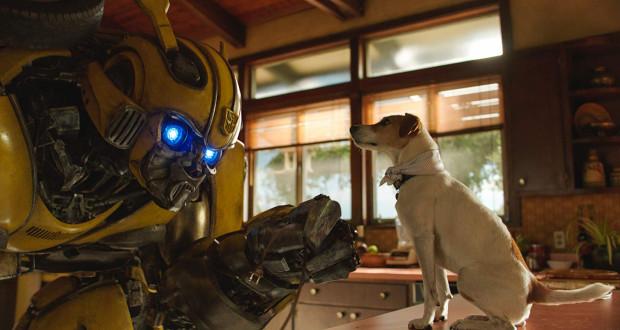 """""""Bumblebee"""" to udany mix kina przygodowego, efektownego widowiska i kameralnej opowieści o magii przyjaźni. Na szczęście twórcy najmocniej akcentują ostatni z tych elementów, dzięki czemu film Travisa Knighta jest nieporównywalnie lepszy niż ostatnie części """"Transformers""""."""