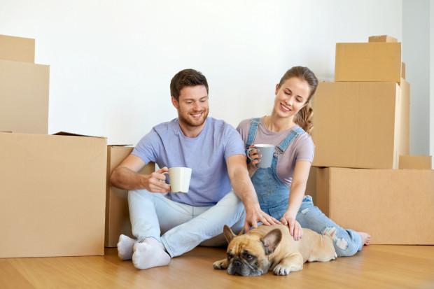 Właściciele czworonogów mają utrudnione zadanie: znalezienie mieszkania przyjaznego zwierzakom może zająć chwilę.