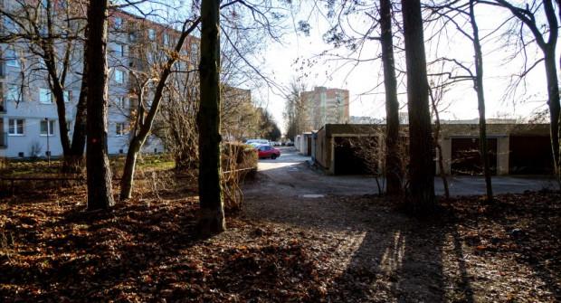 Uporządkowane ma zostać także wejście do lasu przy ul. Nauczycielskiej.
