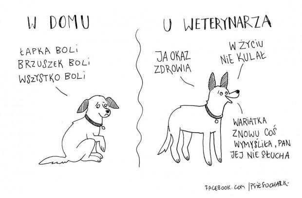 """""""W moim życiu zawsze były psy, ale jak ważne i wyjątkowe są, zrozumiałam dopiero jako osoba dorosła."""""""