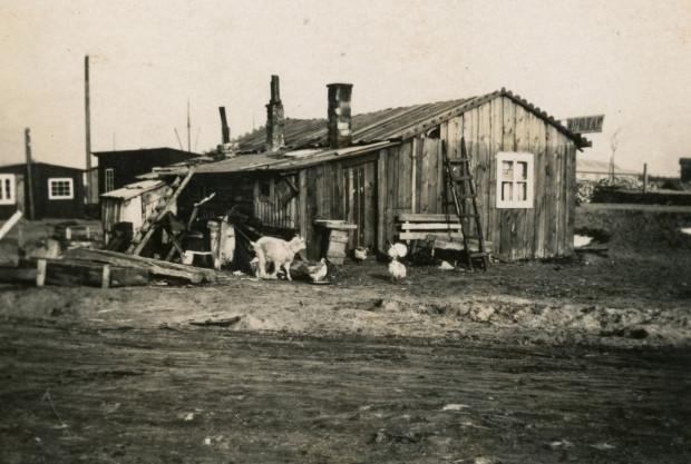 Sklep kolonialny w Gdyni. 1930 r. Ze zbiorów Muzeum Miasta Gdyni.