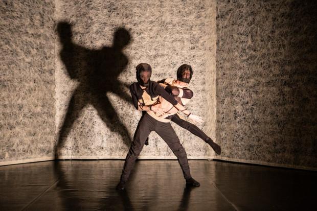 """Belgijska """"Post Anima"""" należała do najefektowniejszych i najciekawszych propozycji tegorocznego Gdańskiego Festiwalu Tańca."""
