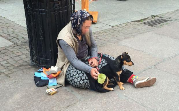 Żebranie ze zwierzętami to jedna z póz żebraczych, które mają wzbudzić w nas współczucie.