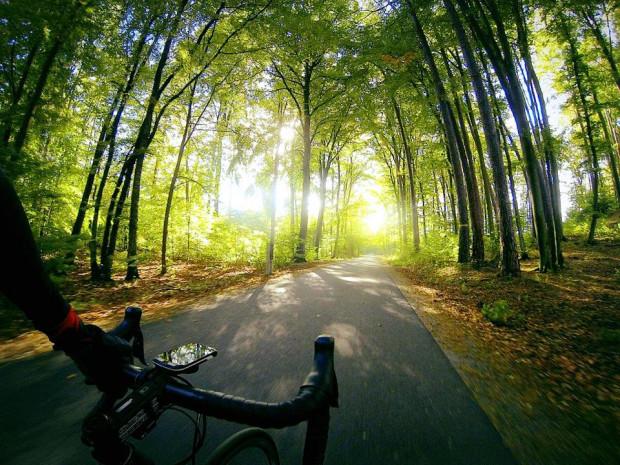 Malownicze tereny Sopotu zachęcają do treningów i przejażdżek rowerowych.