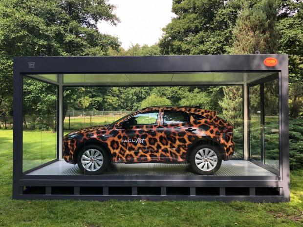 Jaguar E-Pace jak na jaguara przystało musi mieć cętki.