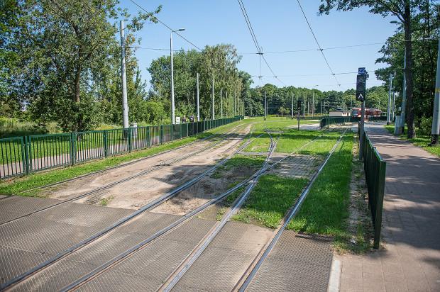 Zielone torowisko na pętli w Jelitkowie