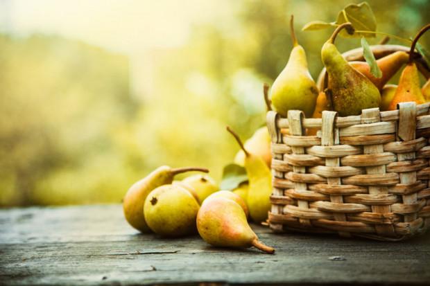 Jesień to czas gruszek i jabłek. Teraz są najsmaczniejsze.