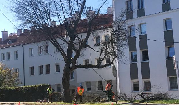 Robotnicy przy ul. Legionów pracują od poniedziałku.