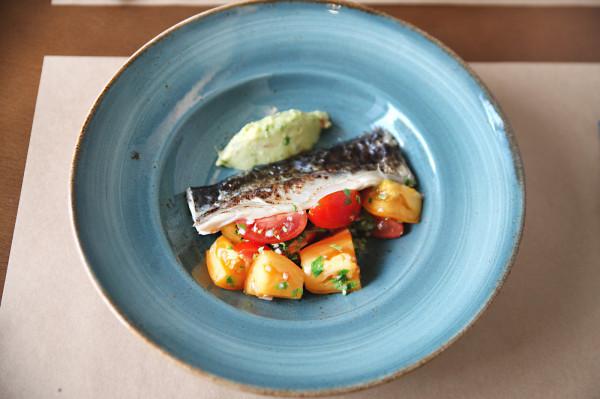 Marynowana makrela, ceviche pomidorowe i sorbet z awokado