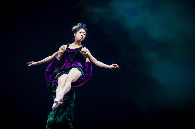 Nowa solistka zespołu Baletu Opery Bałtyckiej - Mayu Takata - ma duże możliwości, które w roli Tytanii ma okazję ujawnić przede wszystkim podczas finałowego duetu z Oberonem.