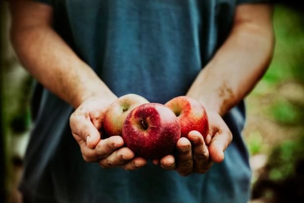 """Chcesz zjeść """"coś słodkiego""""? Wybierz owoce, najlepiej polskie, od lokalnego rolnika."""