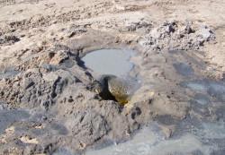 Dziura jaka powstaje po zdetonowaniu pod ziemią materiału wybuchowego.