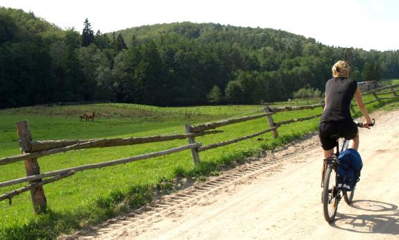Droga powrotna prowadziła równie pięknymi okolicami co w pierwszą stronę.