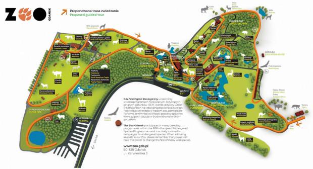 Obecnie na terenie ogrodu czynne są w sezonie cztery bary - Łabędź, Żabka, Miś i Leśny Młyn.