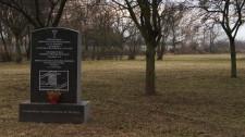 W miejscu znaleziska funkcjonował niegdyś cmentarz ewangelicki.