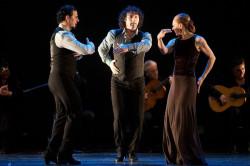 """Marco Flores, Ángel Muñoz i Charo Espino - to jedyni tancerze """"Flamenco Vive"""". Jednak wszyscy spisali się świetnie."""