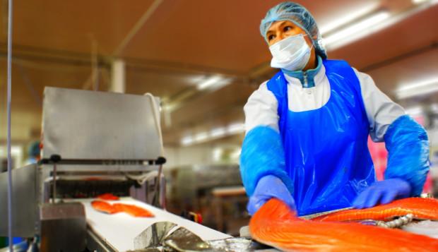 Założona w 1996 roku w Ustce firma zatrudnia ponad 3 tys. osób w ośmiu krajach.